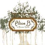 Alice B At Pioneer Grove