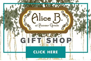 Alice B. at Pioneer Grove Gift Shop/></a></div></div> 		</section><section id=