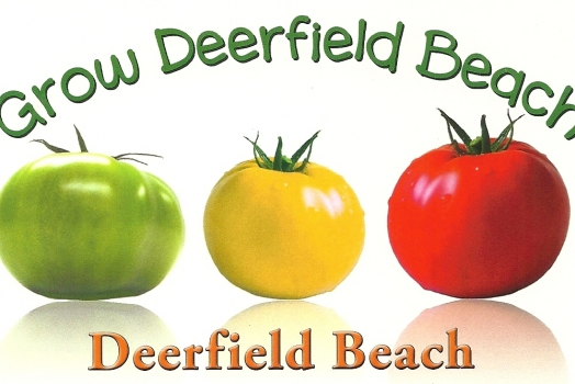 Farmers Market Comes To Deerfield Beach